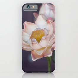 Lovely Water Lily II iPhone Case