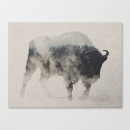 Bison In The Fog Canvas Print