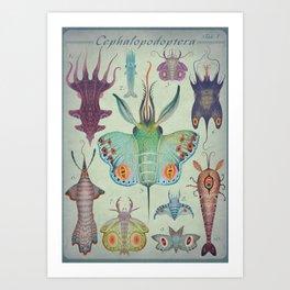 Cephalopodoptera Tab. I Art Print