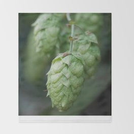 Humulus lupulus, the Common Hop Throw Blanket