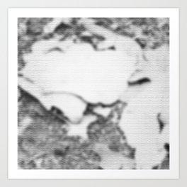 Gray and white texture Art Print