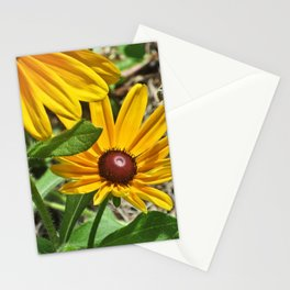 Black-eyed Susans and a Busy Bee Stationery Cards