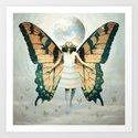 Butterfly Queen by jeffdrewpictures