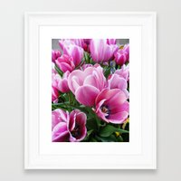 tulips Framed Art Prints featuring tulips by Liudvika's Lens