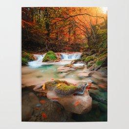 lago en el rio urederra, river and lake in the forest Poster