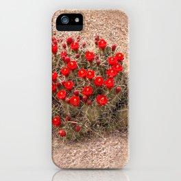 Sandia Cactus Flowers iPhone Case