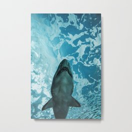 Shark Photography | Deep Sea | Ocean Art | Wildlife | Nature | Fish Metal Print