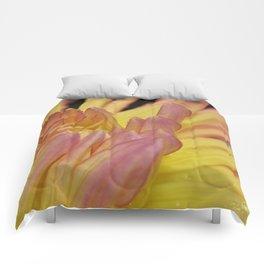 Flower Of Fire Comforters