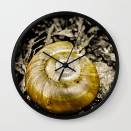 Golden Spiral Wall Clock