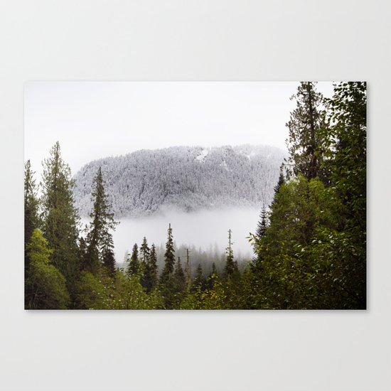 Way up there. Canvas Print