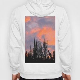 Sunset Silhouettes Hoody