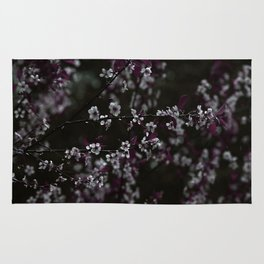 Dark Purple Leaves and White Cherry Blossoms on Black Rug