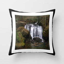 beautiful whatcom falls Throw Pillow
