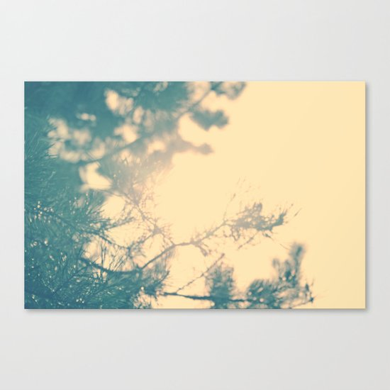 Sunny daze Canvas Print