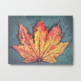 Leaf On Fire Metal Print