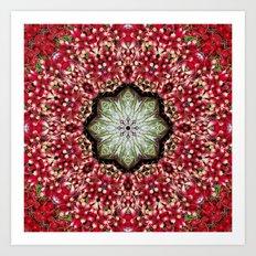 Really radishes! Art Print