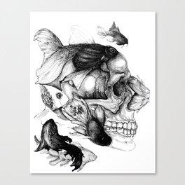 pez Canvas Print