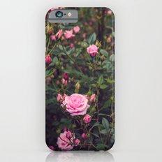 Sweet Summertime II iPhone 6s Slim Case