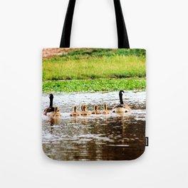 Canada Goose and Goslings II Tote Bag
