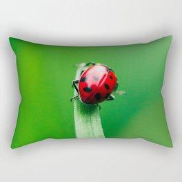Balancing Acts Rectangular Pillow