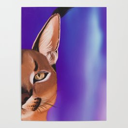 Caracal soul Poster