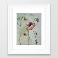 poppy Framed Art Prints featuring poppy by beautifyprints