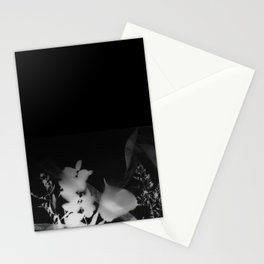 Photogram Stationery Cards