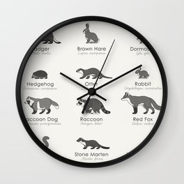 Infographic Guide to Forest Animals Wall Clock