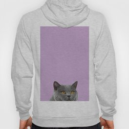 Lavender Home Decor Lilac Decoration British Short haired Cat Bag Pastel Colors Hoody