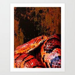 Grunge Coiled Corn Snake Art Print