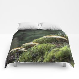 Little Things in a Big Forest Comforters