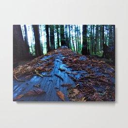 Blue Wood Redwood Metal Print