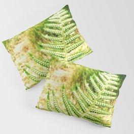 Green Fern Pillow Sham
