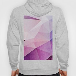 Visualisms Hoody