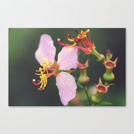 A Macro World Canvas Print