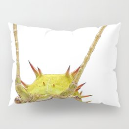 Malaysian Jungle Nymph Face Insect Pretentious Blades Grass Habitat Pillow Sham