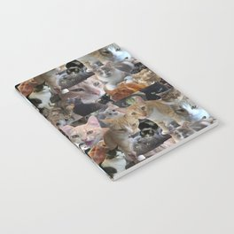 Cats of the neighborhood pattern Notebook