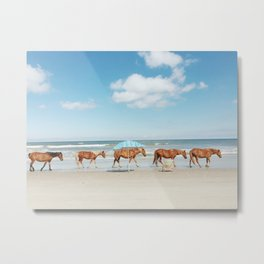 Summer Coast Horse Stride Metal Print