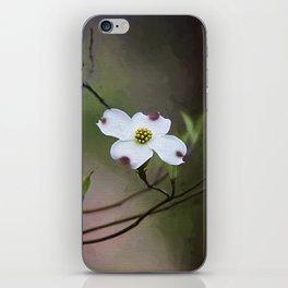 Spring Dogwood Blooms iPhone Skin