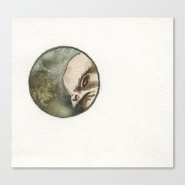 Chick 1,849 of 5,326 Canvas Print