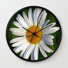Giant Daisy Wall Clock