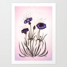 Mystery Garden: Violet cornflower in a pink midday haze Art Print
