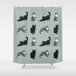 Mint Kitties Shower Curtain
