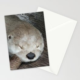 Sleeping Otter in a Log Stationery Cards