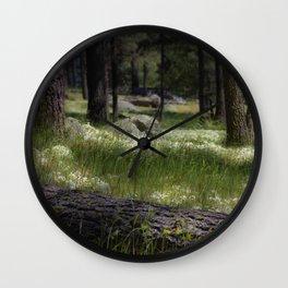 Mt. Laguna San Diego Ca Wall Clock