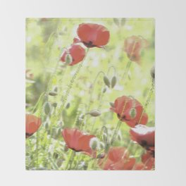 Poppies in the bright sunshine Throw Blanket