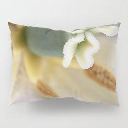 Inside a White Tulip Pillow Sham