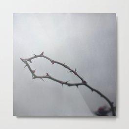 The Crown Of Thorns Metal Print