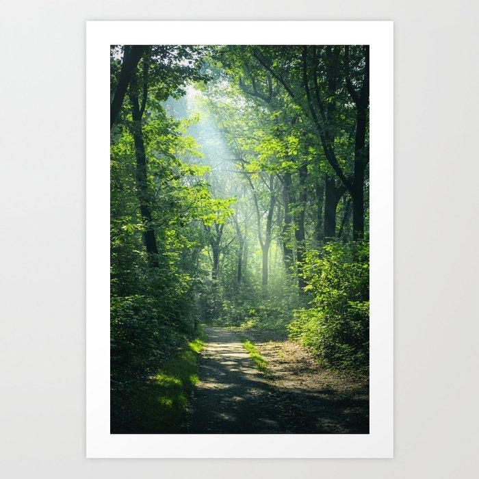 Woodland Glory Kunstdrucke