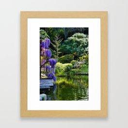 Wisteria at Hakone Gardens Framed Art Print